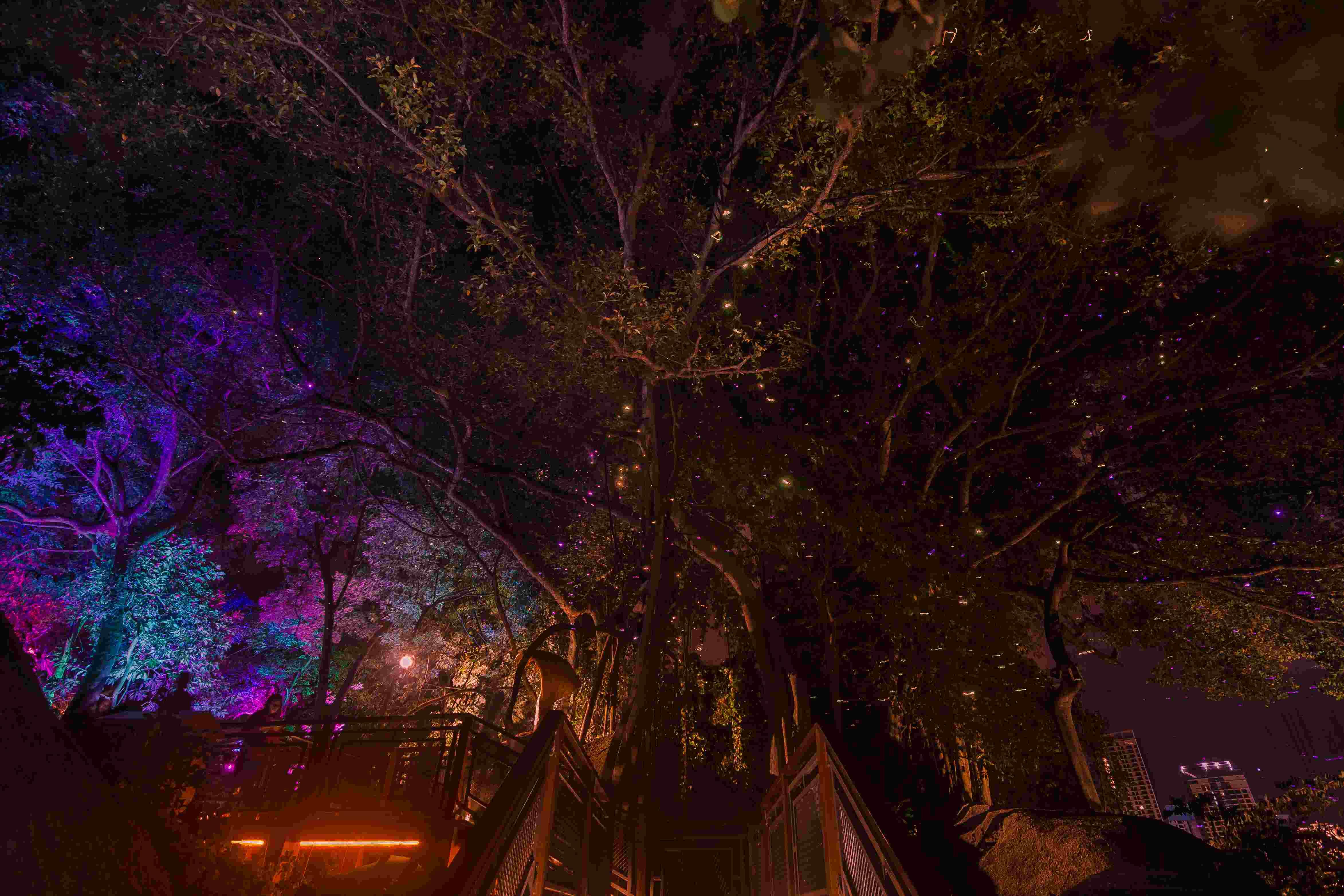 Secret Garden: Enter The Surreal Magical World Of Pandora; Penang Avatar